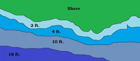 fish depth chart